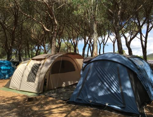 Holidays and weekends in tent at Rocchette